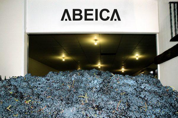 Instalaciones de Bodegas Abeica